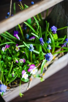 Conceito floral primavera