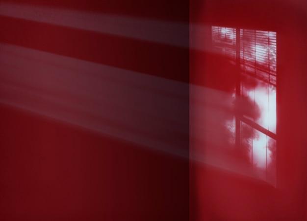 Conceito interior da sombra da sala do espaço da cópia do cimento do fundo
