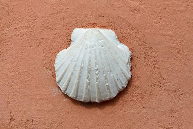 Concha branca de vieira do peregrino em uma parede vermelha,