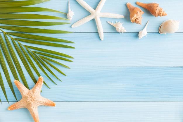 Concha de foto plana leigos e estrela do mar na mesa de madeira azul
