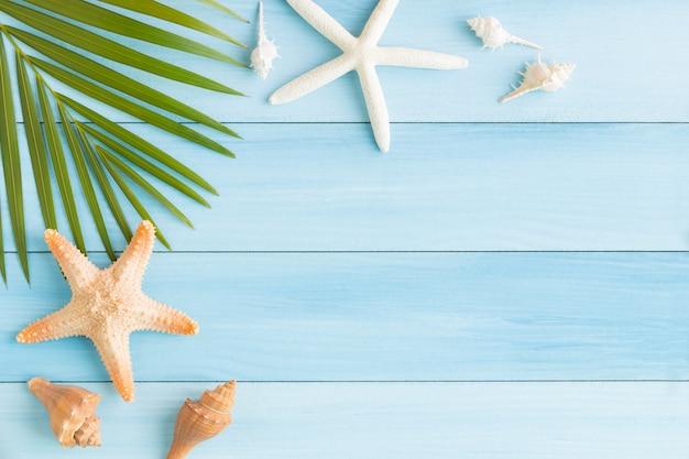 Concha e estrela do mar na mesa de madeira azul