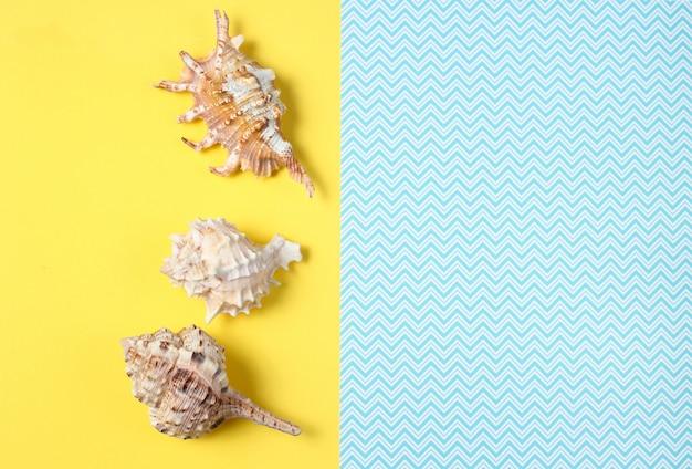 Concha no criativo azul amarelo, verão, vista superior