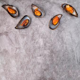 Conchas de mexilhão fresco com espaço de cópia