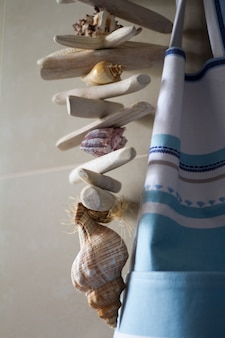 Conchas do mar decoração