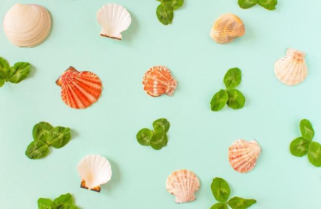 Conchas do mar e folhas verdes de trevo em um fundo azul mínimo. lugar para o seu texto copyspace