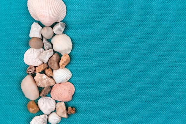 Conchas do mar e pedras em azul