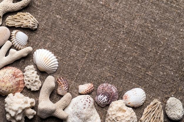 Conchas do mar e seixos no saque.