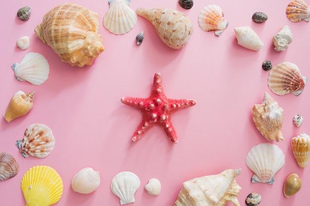 Conchas do mar e símbolo da estrela de férias de verão na praia em um fundo rosa.