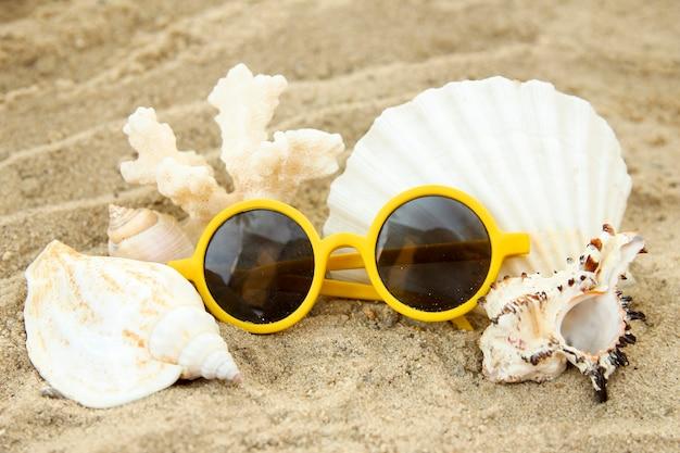 Conchas do mar em fundo de areia