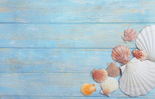 Conchas do mar em fundo de madeira