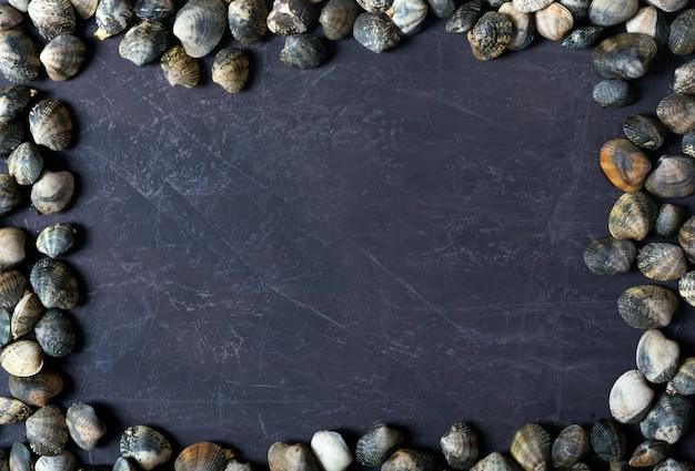 Conchas do mar em mármore