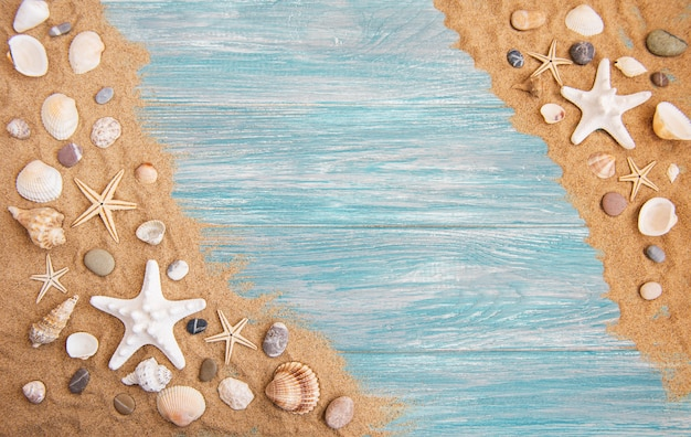 Conchas do mar em uma mesa de madeira