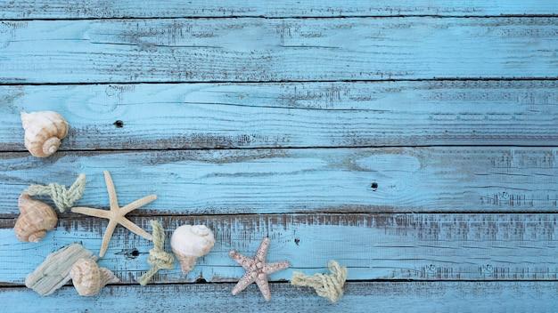 Conchas do mar plana na placa de madeira