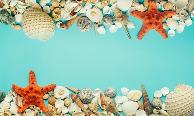 Conchas do mar sobre um fundo azul. descanso, relaxamento, mar, oceano, conceito de verão.