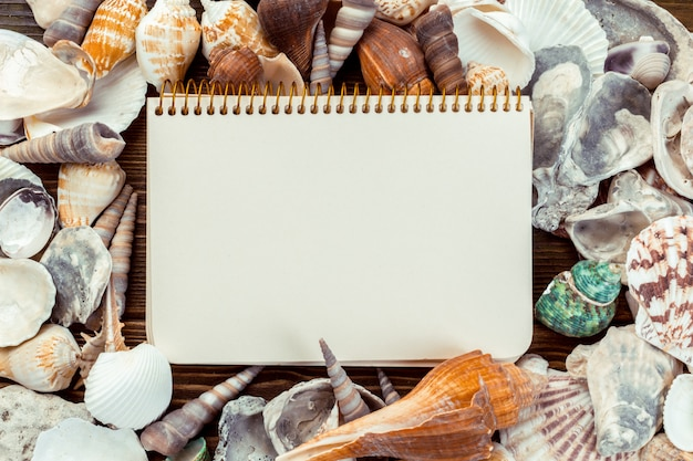 Conchas e bloco de notas na mesa de madeira