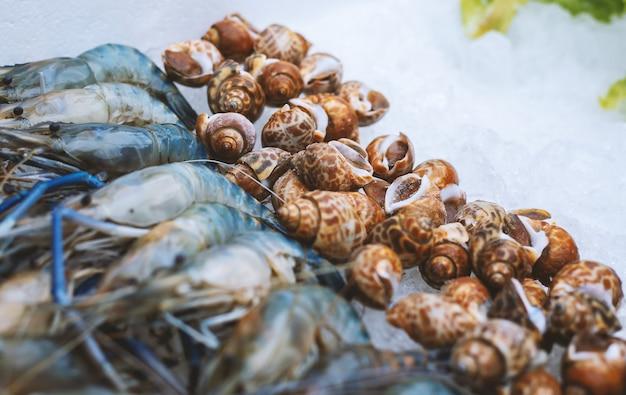 Conchas e camarões no gelo