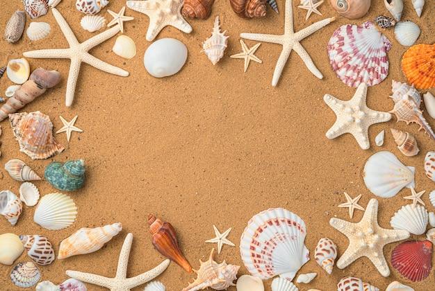 Conchas e estrelas do mar de fundo na areia da praia