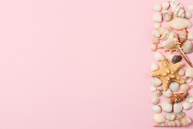 Conchas e estrelas do mar em um fundo rosa pálido