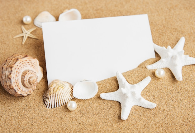 Conchas, seastars e um cartão postal em branco