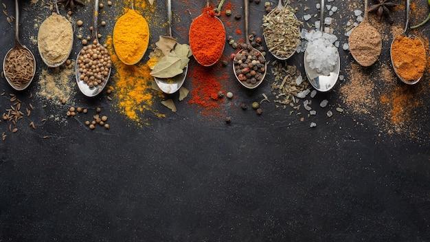 Condimentos indianos com cópia acima da vista