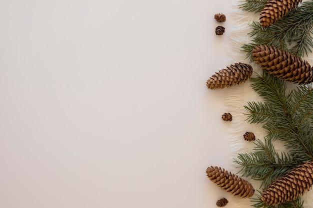Cones laterais e folhas de pinheiro copiam espaço