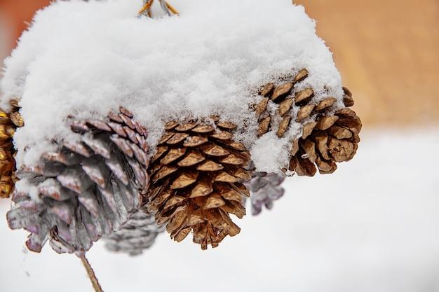Cones pendurados na rua na neve, decorações de natal para o ano novo