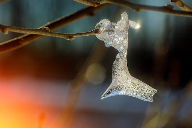 Congeladas gotas de água em detalhe em um galho de árvore com fundo azul roxo e vibrante