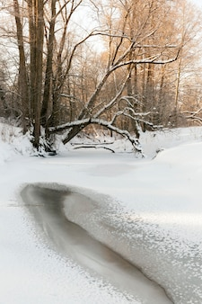 Congelado no inverno, o rio, a superfície do rio e as árvores estão cobertos de neve