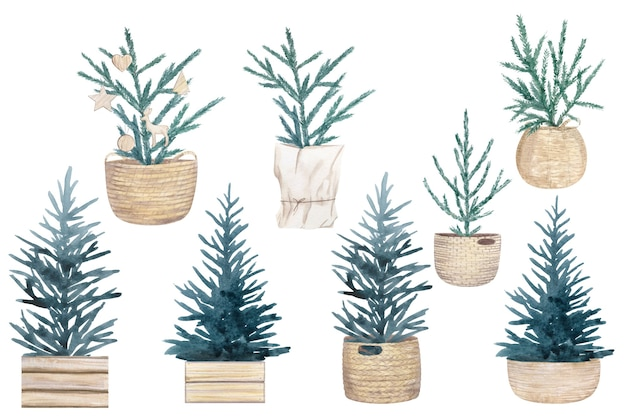 Conjunto aquarela de árvores de natal em estilo escandinavo