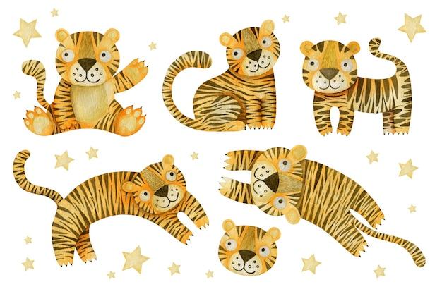 Conjunto aquarela de tigres
