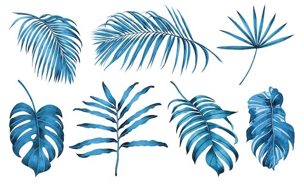 Conjunto de aquarela pintura azul e branco de fundo de folhas tropicais.