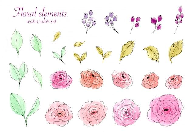 Conjunto de aquarela rosa e folhas