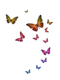 Conjunto de borboletas tropicais voadoras isoladas em um fundo branco