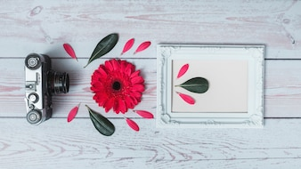 Conjunto de câmera retro, flor, folhas e moldura