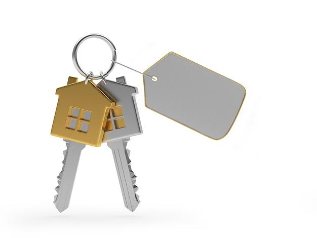 Conjunto de chaves de casas de metal com etiqueta em branco