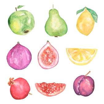 Conjunto de clipart de frutas de verão em aquarela