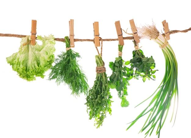 Conjunto de especiarias ervas isoladas em cachos de fundo branco de tomilho, manjericão, orégano, salsa.