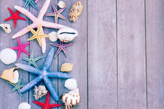 Conjunto de estrelas do mar multicoloridas e conchas do mar em uma placa de madeira como uma borda