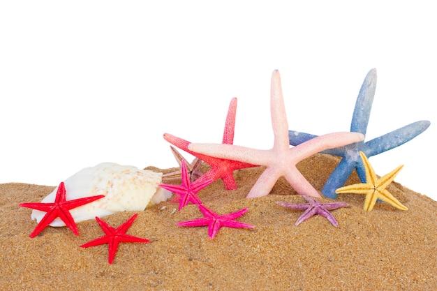 Conjunto de estrelas do mar na areia da praia, isolado no fundo branco