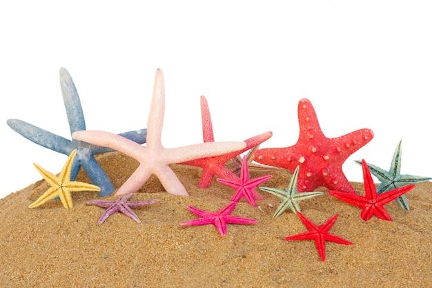 Conjunto de estrelas do mar na areia isolada no fundo branco