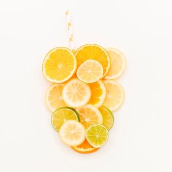 Conjunto de fatias de frutas cítricas no fundo branco