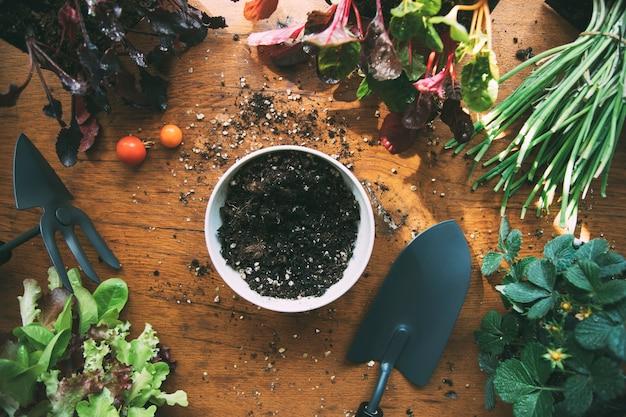 Conjunto de ferramentas de jardinagem com mudas e solo horta orgânica urbana ferramentas de jardim