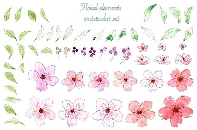 Conjunto de flor aquarela e folhas