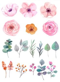 Conjunto de flores em aquarela em branco