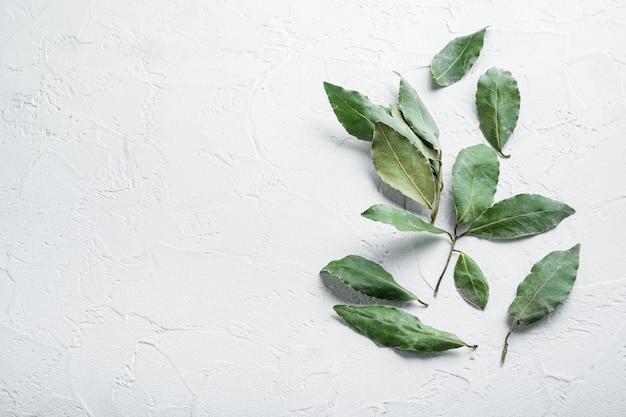 Conjunto de folhas de louro frescas, em mesa de pedra branca