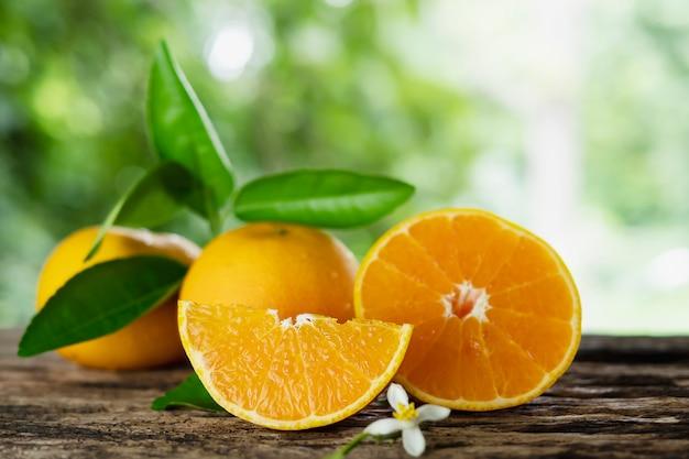 Conjunto de fruta laranja suculenta fresca sobre a natureza verde