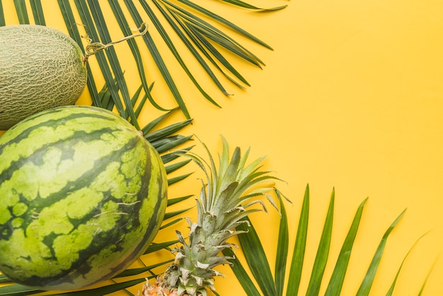 Conjunto de frutas tropicais maduras em folhas de palmeira