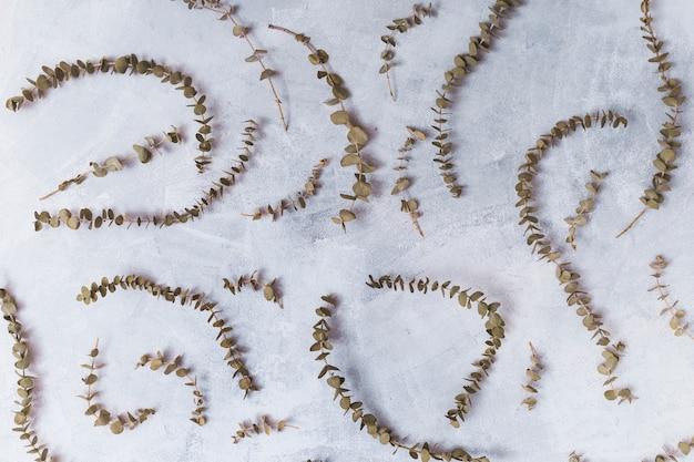 Conjunto de galhos de plantas secas