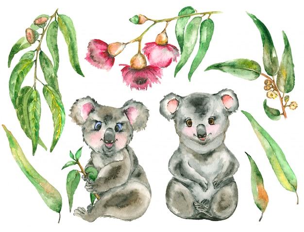 Conjunto de koala em aquarela
