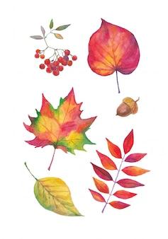 Conjunto de outono em aquarela pintado à mão